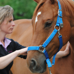 Synovitis/artrose in de hals – wat nu?
